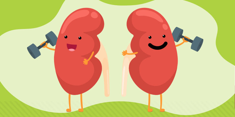 Keeping Your Kidneys Healthy
